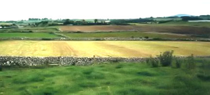 Farming in Cahermaculick in 1974